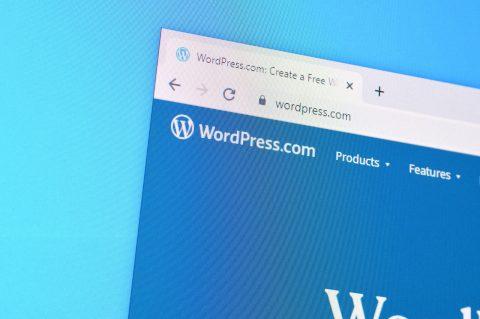 Updating to WordPress 5.5 Broke My Website. How Do I Fix It?